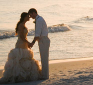 Custom Wedding Packages